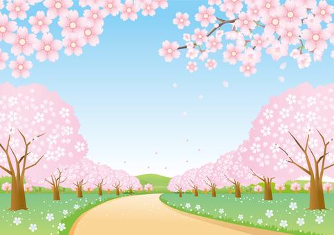 벚꽃 가로수 길의 풍경