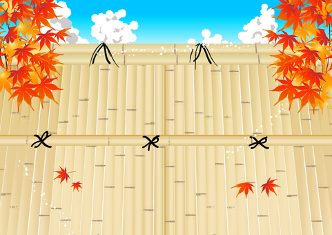 Autumn leaves and bamboo grove