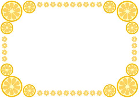 Frame - Citrus - Orange
