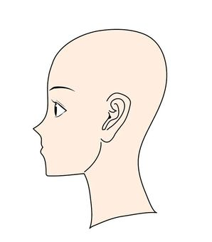 Medical side of the head