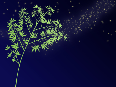 Bamboo and starry sky