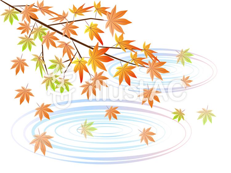 水紋と紅葉の風景のイラスト