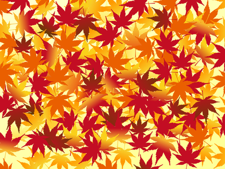 Japanese style background Background maple