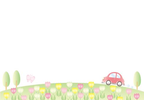 Tulip field and car (no sky)