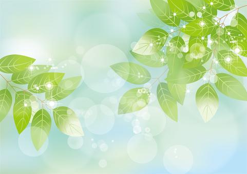 Glittering leaves & sky 35