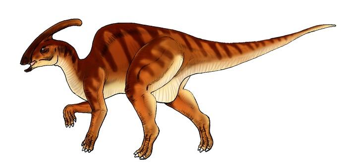 Herbion Dinosaur Paulsarovs