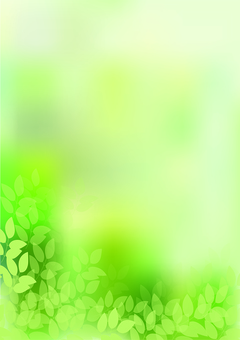 Fresh green 34