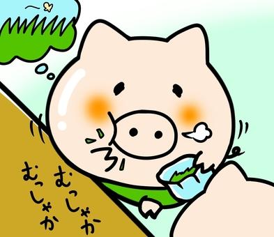 Eating oak for grass