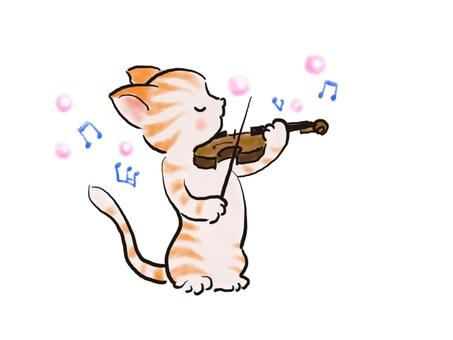 バイオリンねこ37