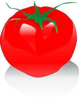 Vegetable Fresh Tomato
