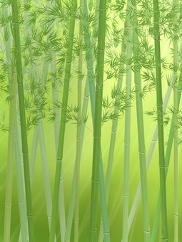 Bamboo forest_vertical_light background