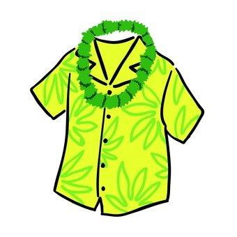Hawaii Fashion 01