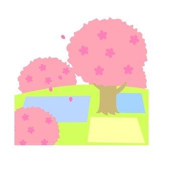 벚꽃 풍경
