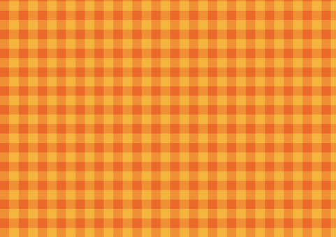 Gingham check <Was there orange?>