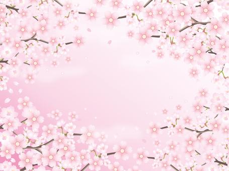 연 분홍색 꽃잎의 배경