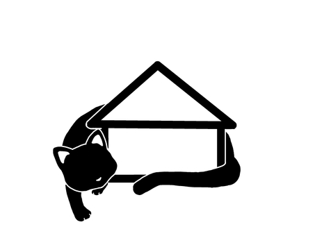 Cat and house