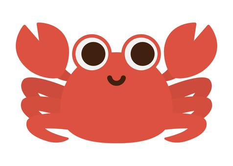 海の生き物-カニ