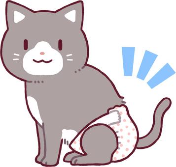 기저귀를 입는 고양이