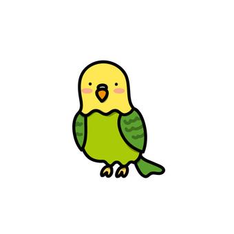 Illustration of a yellow parakeet