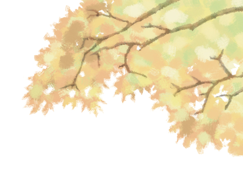 Autumn leaves (white background)