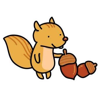 橡子和松鼠