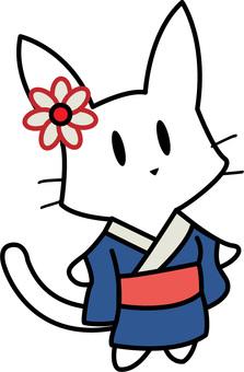 White cat in kimono