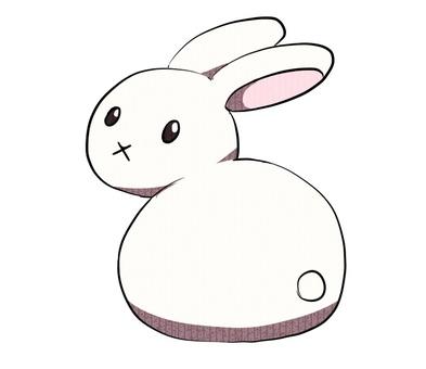 Rabbit turning around