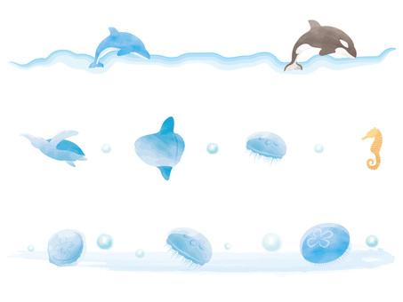 바다 동물 라인 수채화 풍