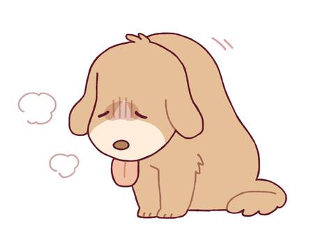 질병의 개
