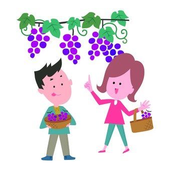 A couple hunting for grapes