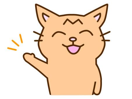 Guide tea tabby cat