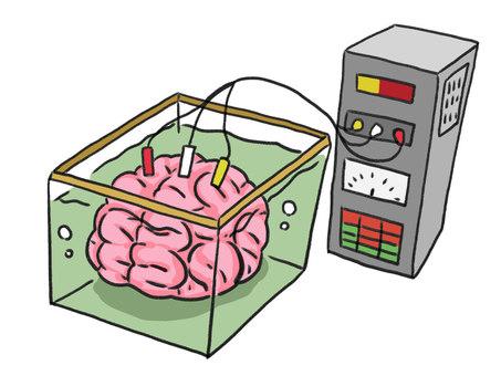 Aquarium brain