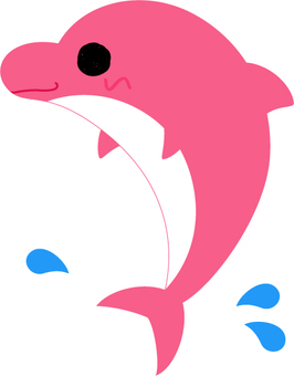 Cute dolphin _ pink