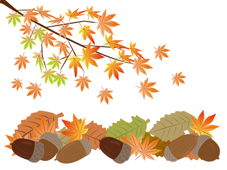 Acorn and autumn leaves