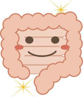 Healthy bowel character