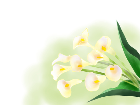 With color flower background