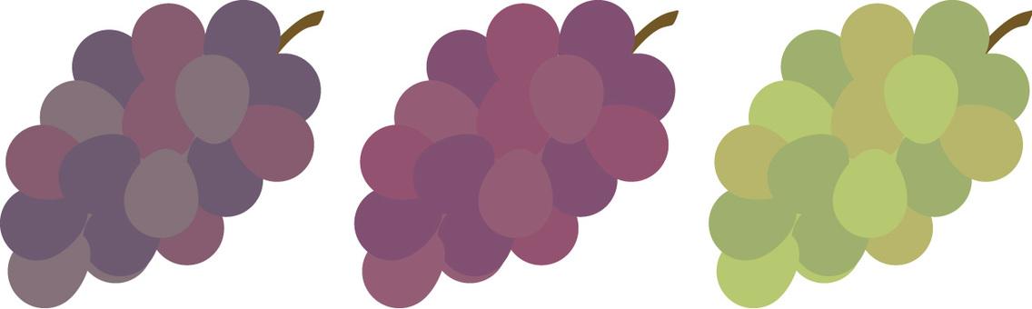 Grape · Muscat grape