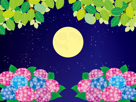 Full moon and four seasons (14) Summer fresh green and hydrangea