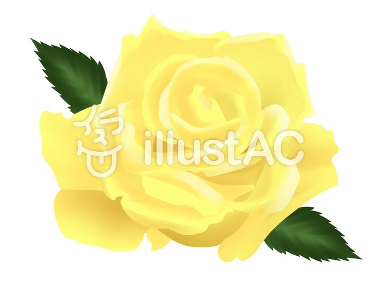 【フリーイラスト素材】黄色いバラ・2