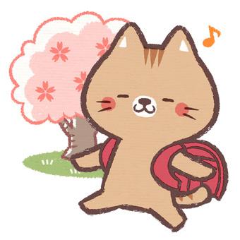 貓入場儀式(紅色)