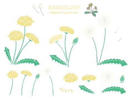Illustration set of dandelion