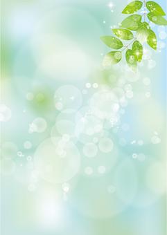 Glittering leaves & sky 57
