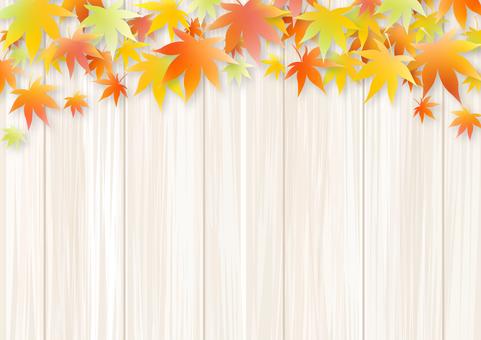 Autumn 234