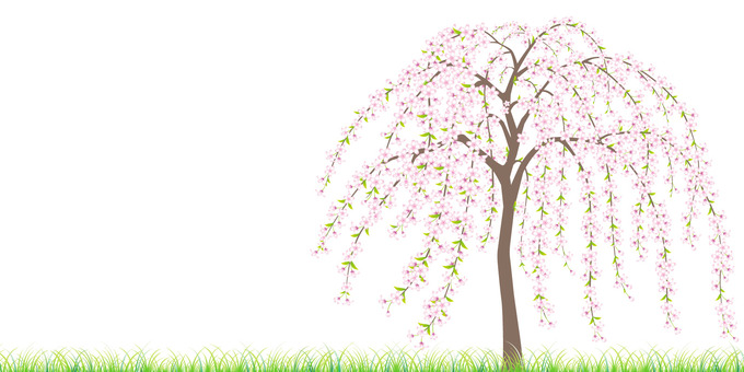 Meadow with weeping cherry