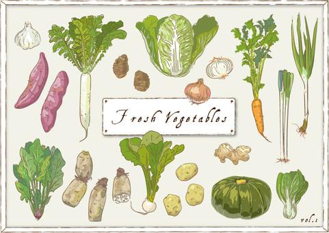 Vegetable _ 01