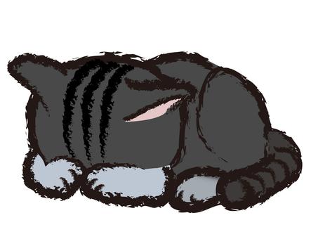 Japanese style kitten cat