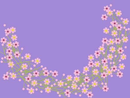 Kasumi grass pink