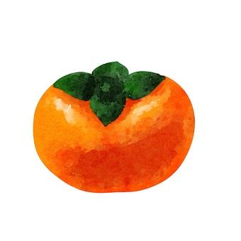 Watercolor food series