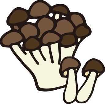 Mushroom (Shimeji)