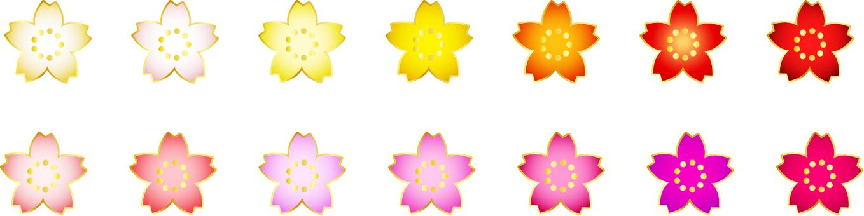 화려한 벚꽃의 꽃잎